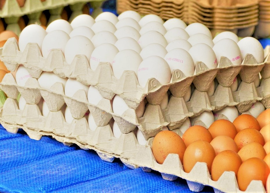 Eggs-price-hike-middle-class-to-be-highly-effected-bengali-news-Sangbad-Bhaskar